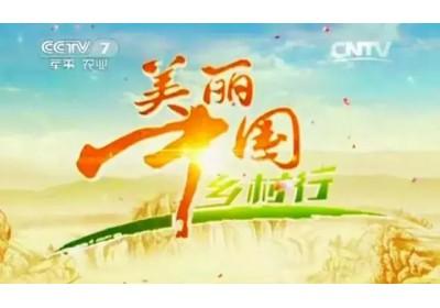 2015年8月10日中央电视台在恒益拍摄《美丽中国乡村行》过程回顾!